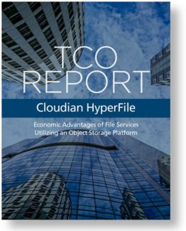 Cloudian-TCO-Report_HyperFile-1