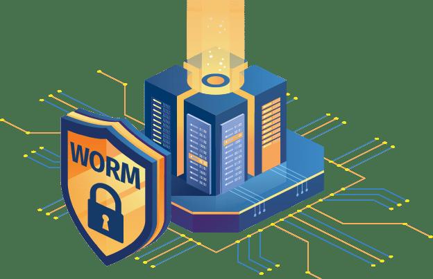 worm data lock